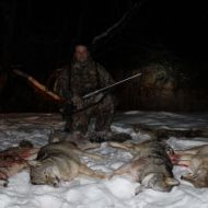 coyote hunts 02